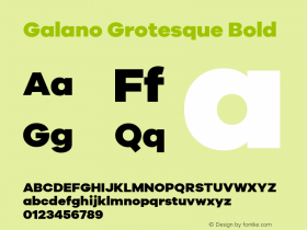 Galano Grotesque Bold Version 1.000;PS 001.000;hotconv 1.0.70;makeotf.lib2.5.58329;com.myfonts.easy.rene-bieder.galano-grotesque.heavy.wfkit2.version.4kJL Font Sample