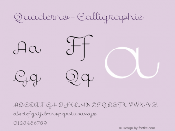 Quaderno-Calligraphic ☞ Version 1.000;PS 001.000;hotconv 1.0.70;makeotf.lib2.5.58329;com.myfonts.easy.resistenza.quaderno.calligraphic.wfkit2.version.4kZy Font Sample