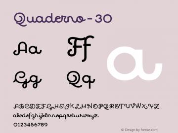 Quaderno-30 ☞ Version 1.000;PS 001.000;hotconv 1.0.70;makeotf.lib2.5.58329;com.myfonts.easy.resistenza.quaderno.30.wfkit2.version.4kZK Font Sample