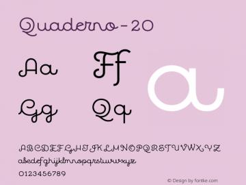 Quaderno-20 ☞ Version 1.000;PS 001.000;hotconv 1.0.70;makeotf.lib2.5.58329;com.myfonts.easy.resistenza.quaderno.20.wfkit2.version.4kZL Font Sample