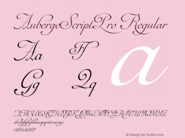AubergeScriptPro Regular Version 1.000;com.myfonts.easy.sudtipos.auberge-script.pro.wfkit2.version.4mn9 Font Sample