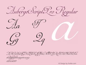 AubergeScriptPro Regular Version 1.000;com.myfonts.easy.sudtipos.auberge-script.pro.wfkit2.version.4mn9图片样张