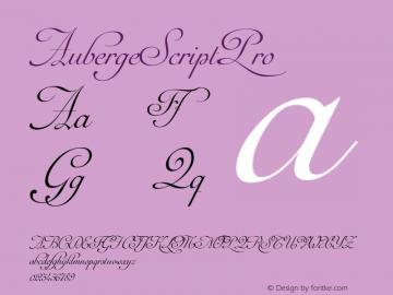 AubergeScriptPro ☞ Version 1.000;com.myfonts.easy.sudtipos.auberge-script.pro.wfkit2.version.4mn9图片样张