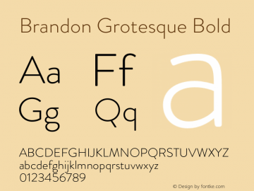 Brandon Grotesque Bold Version 001.000;com.myfonts.easy.hvdfonts.brandon-grotesque.light.wfkit2.version.44Sa Font Sample