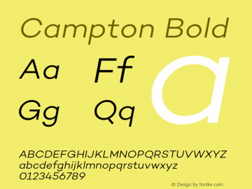Campton Bold Version 1.000;PS 001.000;hotconv 1.0.70;makeotf.lib2.5.58329;com.myfonts.easy.rene-bieder.campton.light-italic.wfkit2.version.4hPJ Font Sample