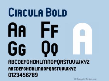 Circula Bold Version 1.000;com.myfonts.easy.paragraph.circula.heavy.wfkit2.version.3pft Font Sample