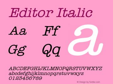 Editor Italic Version 001.000 Font Sample