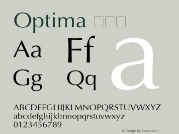 Optima 常规体 6.1d4e2 Font Sample
