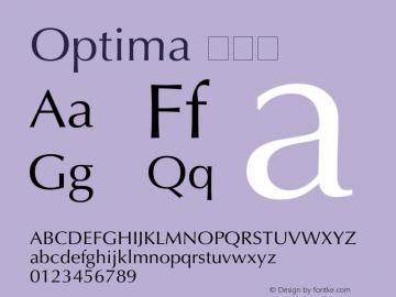 Optima 常规体 6.1d4e1 Font Sample