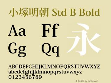 小塚明朝 Std B Bold OTF 1.005;PS 4.003;Core 1.0.29;makeotf.lib1.4.0 Font Sample