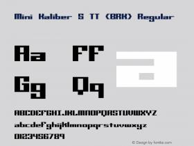 Mini Kaliber S TT (BRK) Regular Version 3.25图片样张