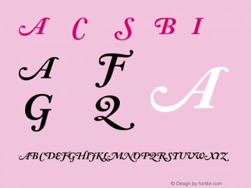 Adobe Caslon SwashBoldItalic Version 001.001 Font Sample