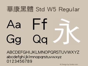 華康黑體 Std W5 Regular Version 1.03图片样张