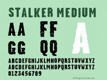 Stalker Medium Version 001.000图片样张