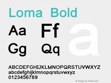 Loma Bold Version 0.9.18: 2012-02-13图片样张