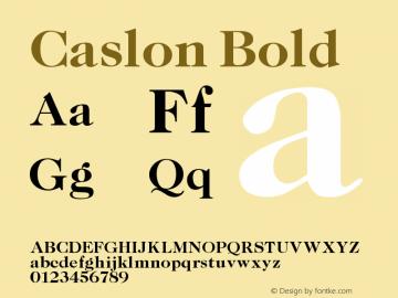 Caslon Bold Version 001.000 Font Sample