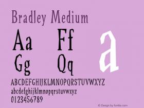 Bradley Medium Version 001.000图片样张