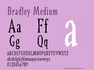 Bradley Medium Version 001.000图片样张