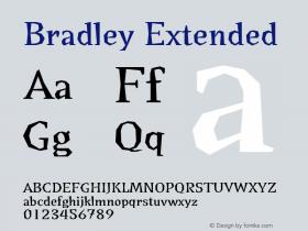 Bradley Extended Version 001.000图片样张