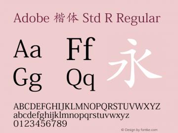 Adobe 楷体 Std R Regular Version 5.004;PS 5.003;hotconv 1.0.49;makeotf.lib2.0.15106图片样张