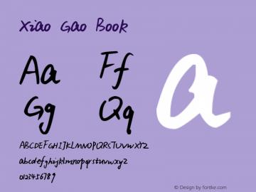 Xiao Gao Book Version 1.00 November 24, 20图片样张