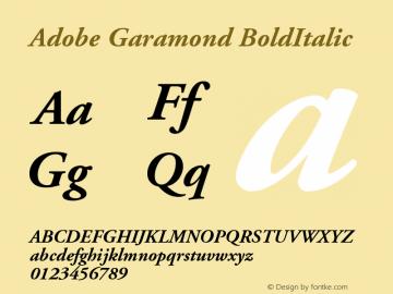 Adobe Garamond BoldItalic Version 001.003 Font Sample