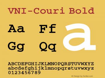 VNI-Couri Bold 1.0 Sun Apr 25 09:26:04 1993 Font Sample