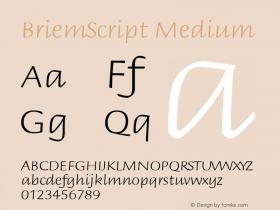 BriemScript Medium 001.000 Font Sample