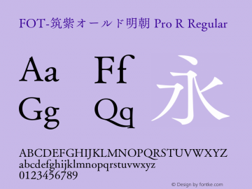 FOT-筑紫オールド明朝 Pro R Regular Version 1.000;PS 1;hotconv 1.0.38;makeotf.lib1.6.5960图片样张