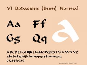 VI Bodacious (Bum) Normal Unknown Font Sample