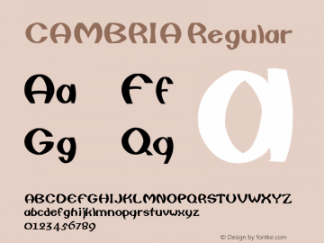 CAMBRIA Regular Unknown Font Sample