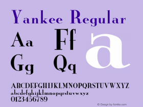 Yankee Regular Unknown Font Sample
