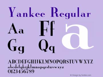 Yankee Regular Unknown Font Sample