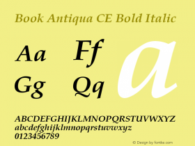 Book Antiqua CE Bold Italic Version 1.4 - East European character set Font Sample