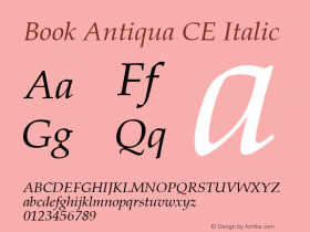 Book Antiqua CE Italic Version 1.4 - East European character set Font Sample