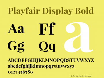 Playfair Display Bold Version 1.005; ttfautohint (v1.2) -l 10 -r 42 -G 200 -x 21 -D latn -f latn -w G -X