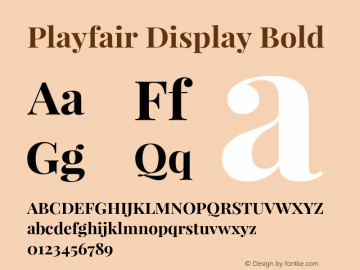 Playfair Display Bold Version 1.005;PS 001.005;hotconv 1.0.70;makeotf.lib2.5.58329 Font Sample
