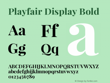 Playfair Display Bold Version 1.004;PS 001.004;hotconv 1.0.70;makeotf.lib2.5.58329 Font Sample