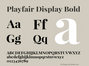Playfair Display Bold Version 1.003;PS 001.003;hotconv 1.0.70;makeotf.lib2.5.58329 Font Sample