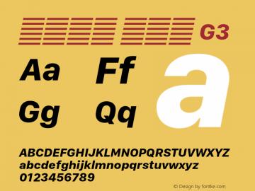 系统字体 粗斜体 G3 11.0d10e2 Font Sample