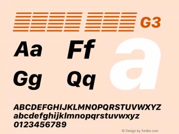 系统字体 粗斜体 G3 11.0d12e2 Font Sample