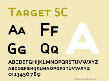 Target SC Version 001.000图片样张