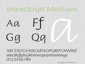 BriemScript Medium Version 001.000 Font Sample