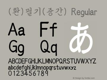 (환)필기(중간) Regular HAN Font Conversion Ver 1.0 by Art-Woder Font Sample