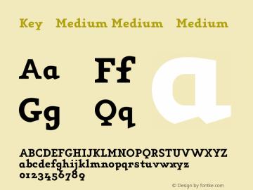 Key-Medium Medium-Medium Version 001.001图片样张