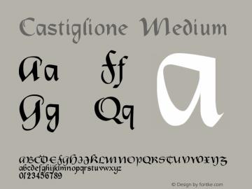 Castiglione Medium Version 001.000 Font Sample