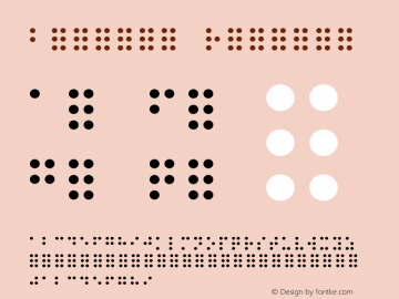 Braille Regular Unknown Font Sample