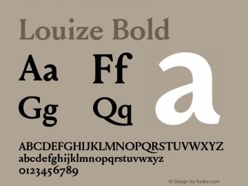 Louize Bold Version 1.000 Font Sample