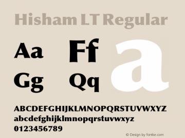 Hisham LT Regular Version 1.10图片样张