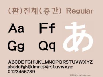(환)진체(중간) Regular HAN Font Conversion Ver 1.0 by Art-Woder Font Sample